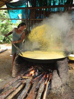 Silvia, a Tukano woman producing farinha (poka) (Melissa Santana de Oliveira, 2014)