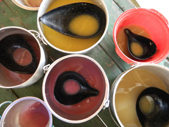 Manioc farinha porridges (Melissa Santana de Oliveira, 2014)