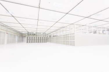 A World of White Space (Alexander Taylor, 2017)