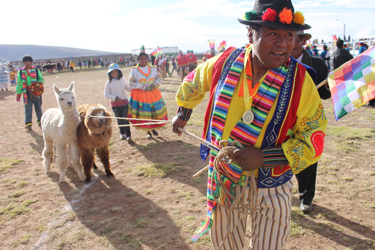 Tío Vicente pulls the reluctant third-place prizes (two alpacas) back to his group of dancers following the village's annual dance competition (Corinna Howland, 2017)